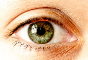 A Recent Study By Prevent Blindness America Showed That Women Are At Higher Risk Than Men For Most Eye Diseases Cause Vision Loss Including Glaucoma