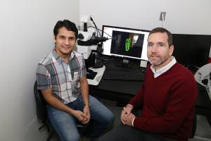Drs. Jogender Singh (left), Alejandro Aballay