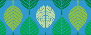 Brain Awareness Lecture Series illustration
