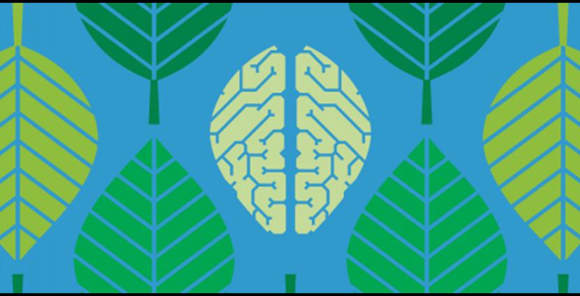 Brain Awareness Lecture Series illustration