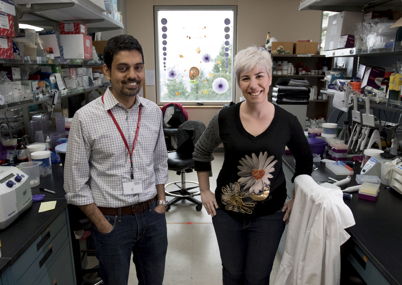 Dr. Sudarshan Anand (left) and postdoctoral researcher Cristina Espinosa in their lab, November 16, 2016. The early evidence from research by Dr. Sudarshan Anand and his team at OHSU is promising, suggesting there may be a panel of microRNA that can be used as a biomarker for radiation therapy for many types of cancer in the future. (OHSU/Kristyna Wentz-Graff)