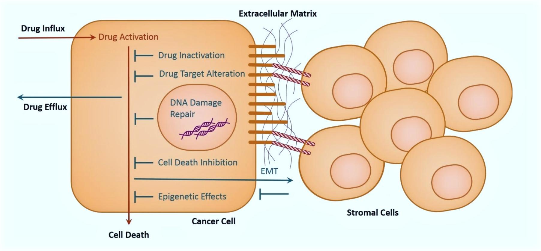 drug resistance diagram