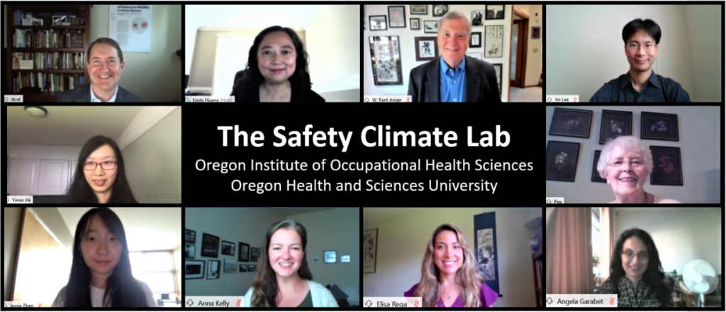 OccHealthSci Safety Climate Virtual Meeting Photograph
