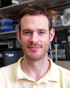 Matt Whorton, Ph.D.