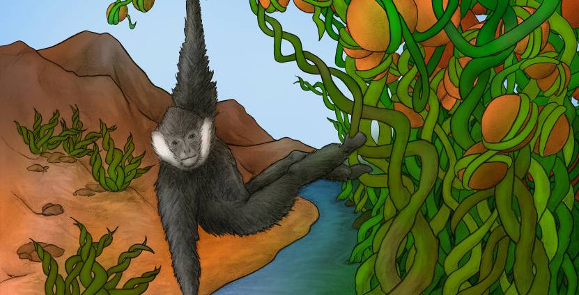 A northern white-cheeked gibbon is swinging across a river that separates different landscapes, inspired by the complex patterns of epigenetic states within the genome.