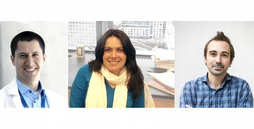 Biomedical Innovation Program Awards 2019 recipients Luiz Bertassoni, Summer L. Gibbs, Michael Cohen