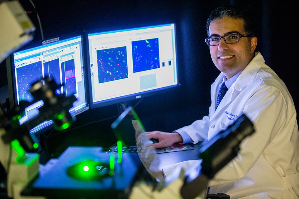 Dr. Shandiz Tehrani