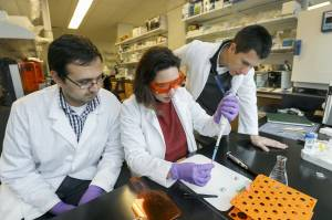 """Anthony Tahayeri, and Drs. Cristiane Franca and Luiz E. Bertassoni, work with a new device called """"tooth-on-a-chip"""" that allows researchers from the Bertassoni Lab to at OHSU observe how teeth interact with reconstruction materials and bacteria."""